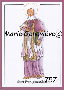 saint François de Sales violet
